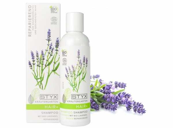 AROMA DERM KRÄUTERGARTEN BASIC Shampoo mit BIO Lavendel